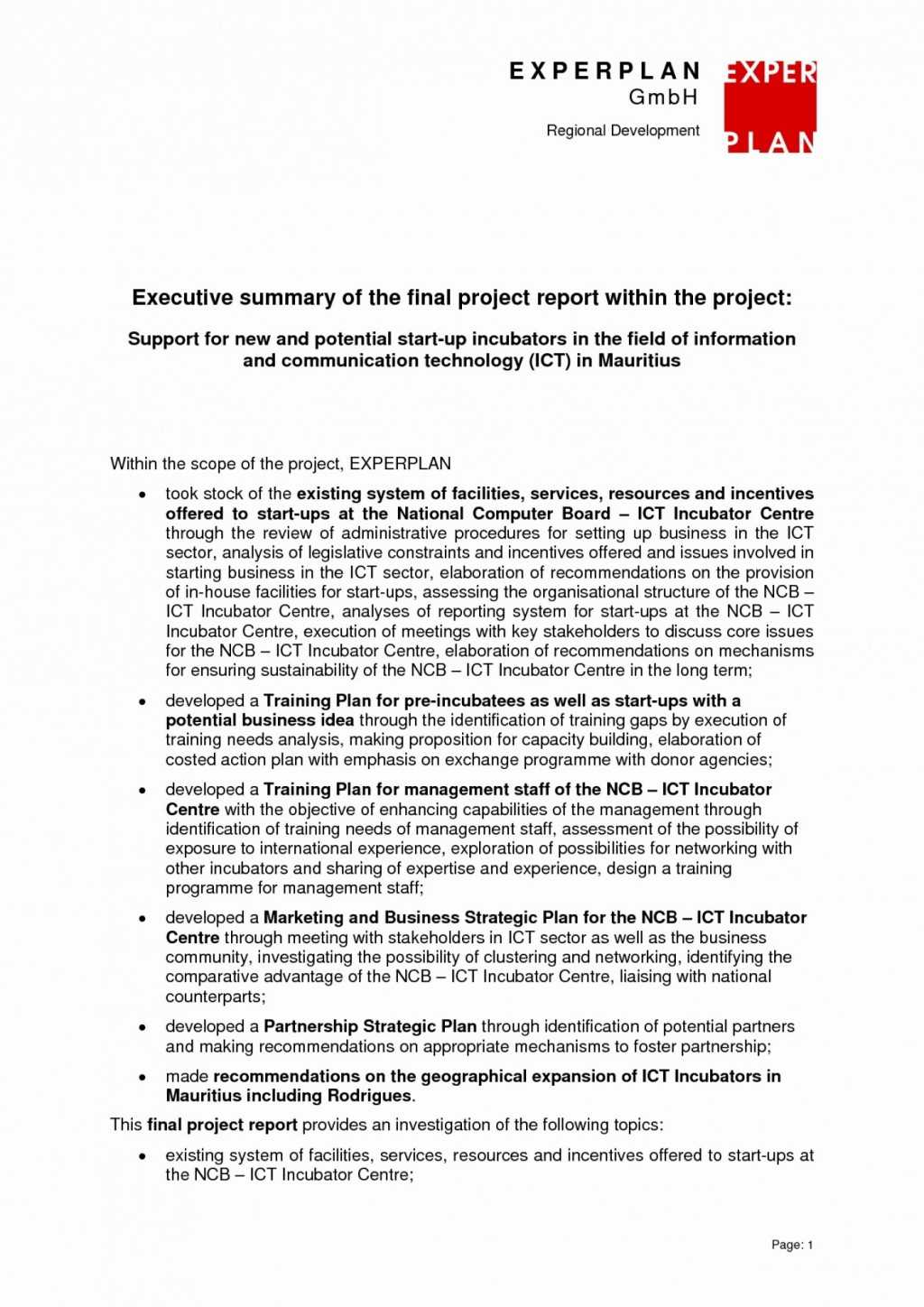 008 Project Management Executive Summary Report Template Pertaining To Research Project Report Template