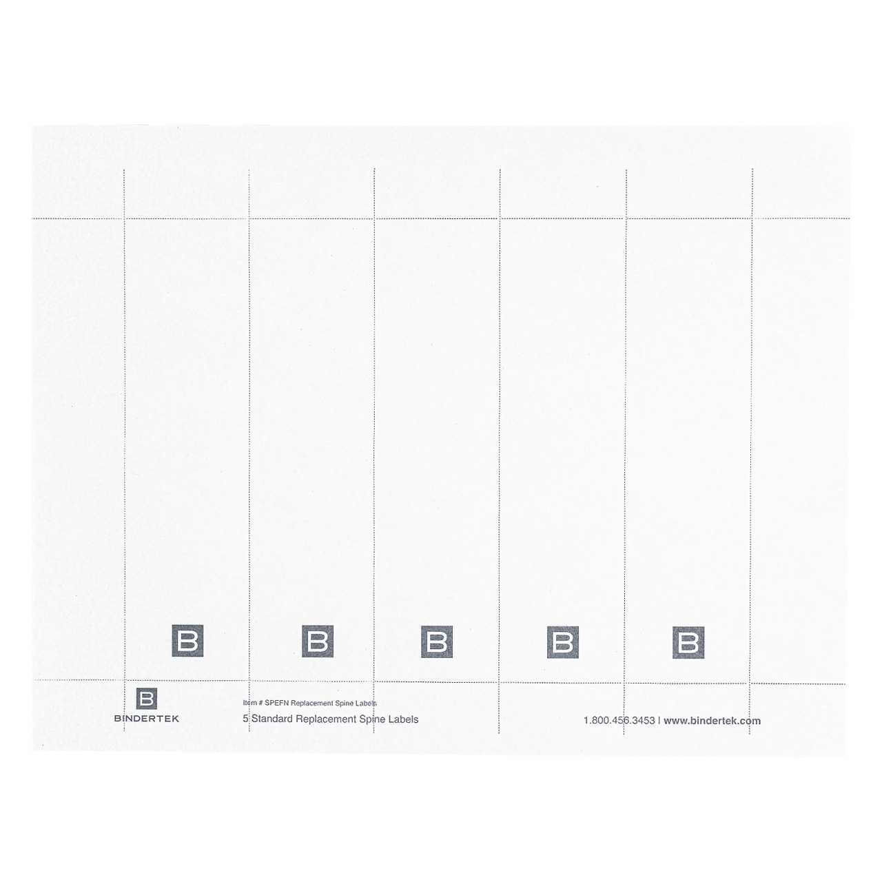 3 Ring Binder Labels – Horizonconsulting.co Inside 3 Inch Binder Spine Template Word