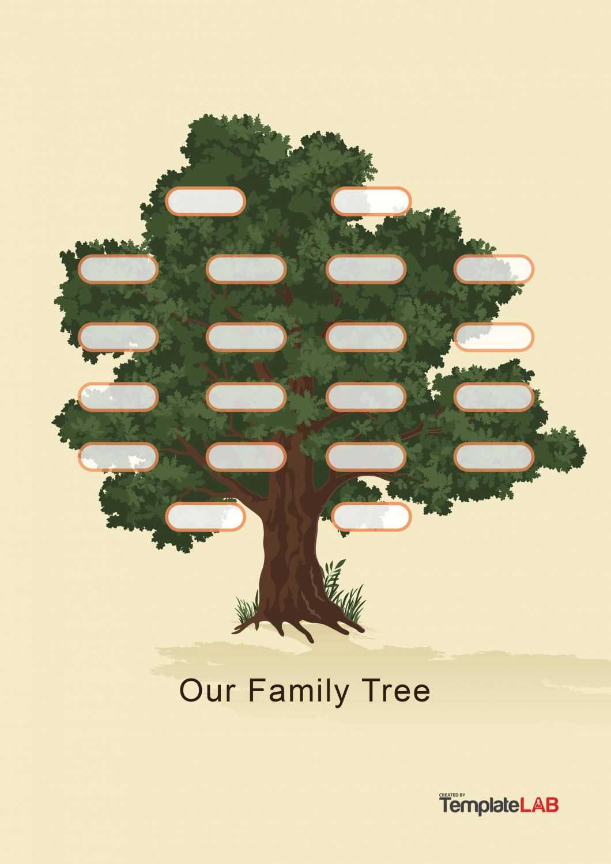 30 Free Genogram Templates & Symbols ᐅ Template Lab Within Family Genogram Template Word