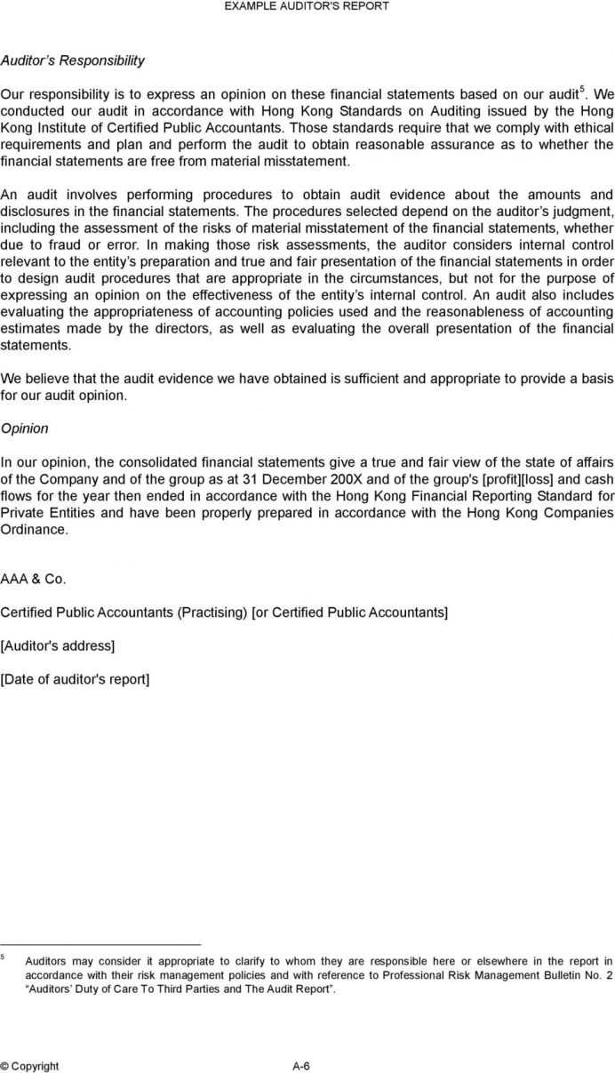 Accountants Report Template Management Ccounting Format Inside Forensic Accounting Report Template