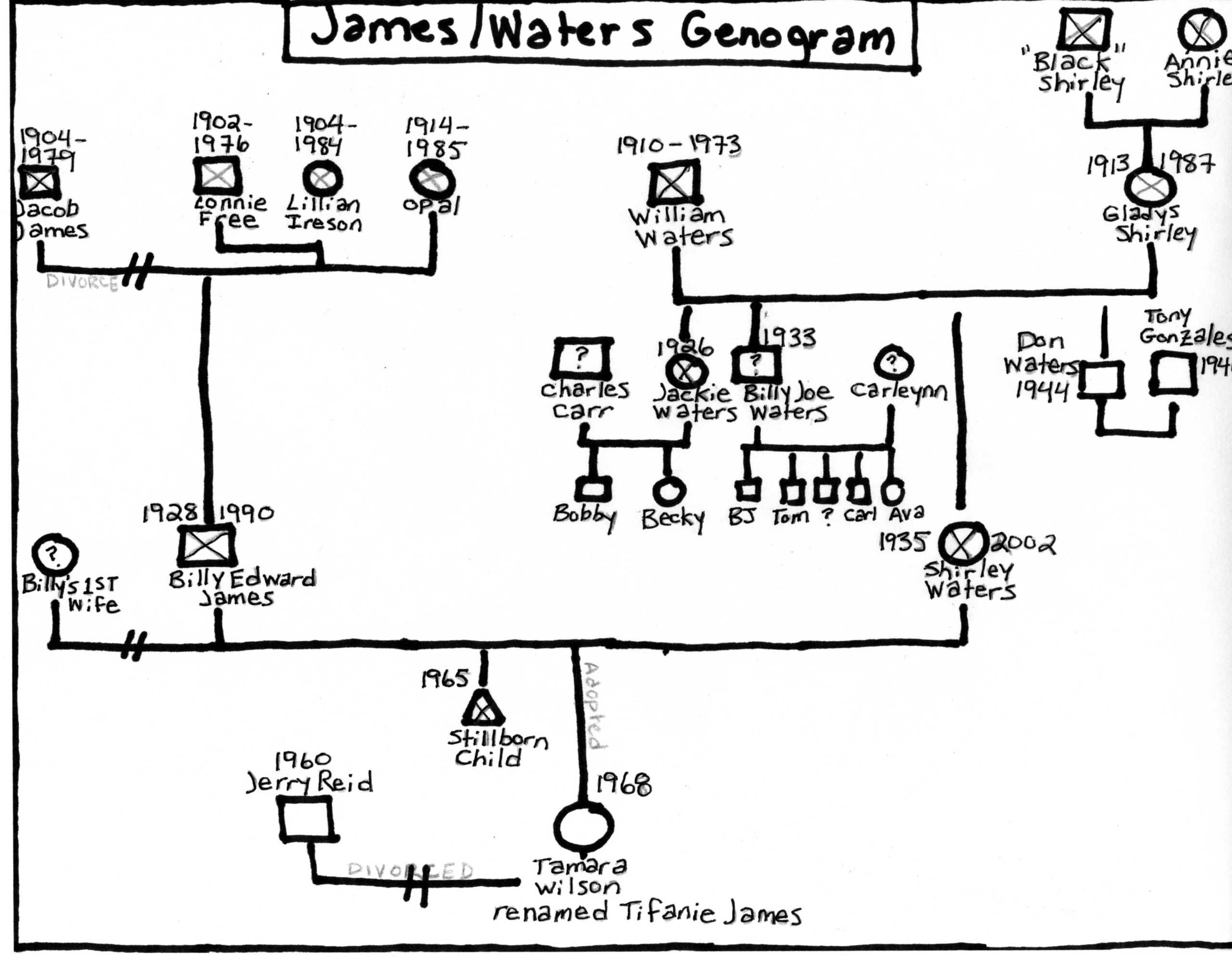 What Is A Genogram Genopro. Family Communication Genograms Throughout Family Genogram Template Word
